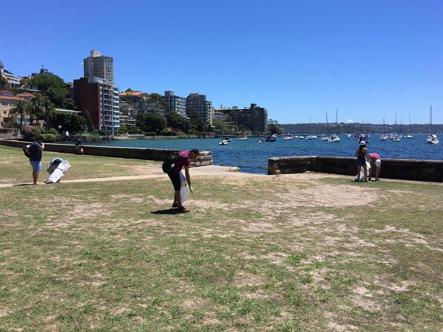 Beach clean-up